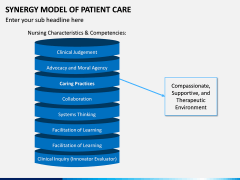 Synergy Model of Patient Care PPT Slide 5