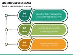 Cognitive Neuroscience PPT Slide 19