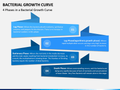 Bacterial Growth Curve PPT Slide 7
