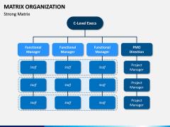 Matrix Organization PPT Slide 8