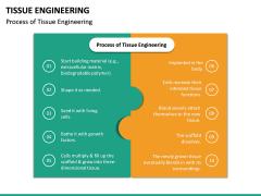 Tissue Engineering PPT Slide 24