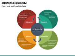 Business Ecosystem PPT Slide 29