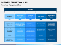 Business Transition Plan PPT Slide 3