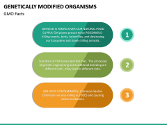 Genetically Modified Organisms (GMO) PPT Slide 18