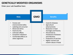 Genetically Modified Organisms (GMO) PPT Slide 10