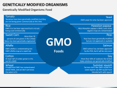 Genetically Modified Organisms (GMO) PPT Slide 6