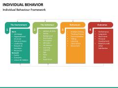 Individual Behavior PPT Slide 22