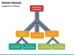 Patient Process PPT Slide 18