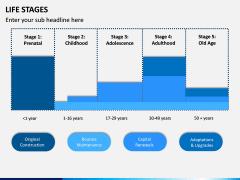 Life Stages PPT Slide 7