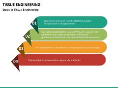 Tissue Engineering PPT Slide 25