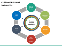 Customer Insight PPT Slide 21