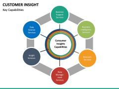 Customer Insight PPT Slide 21