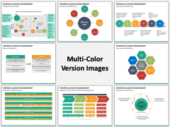 Strategic account management multicolor combined