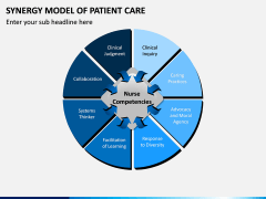 Synergy Model of Patient Care PPT Slide 2