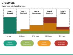 Life Stages PPT Slide 14