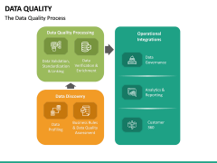 Data Quality PPT Slide 21
