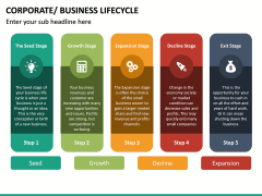 Business Lifecycle PPT Slide 24