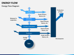 Energy Flow PPT Slide 8