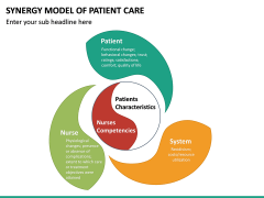 Synergy Model of Patient Care PPT Slide 8