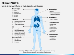 Renal Failure PPT Slide 12