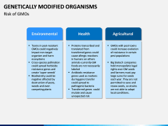 Genetically Modified Organisms (GMO) PPT Slide 8