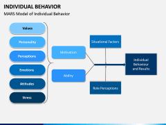Individual Behavior PPT Slide 11