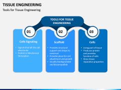 Tissue Engineering PPT Slide 5