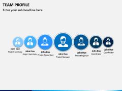 Team Profile PPT Slide 17