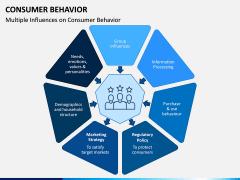 Consumer Behavior PPT Slide 6