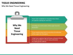 Tissue Engineering PPT Slide 17
