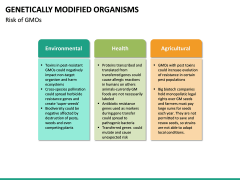 Genetically Modified Organisms (GMO) PPT Slide 21