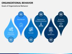 Organizational Behavior PPT Slide 12