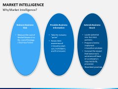 Market intelligence PPT slide 10