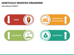 Genetically Modified Organisms (GMO) PPT Slide 22