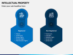 Intellectual Property PPT Slide 8