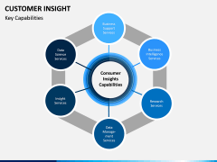 Customer Insight PPT Slide 3