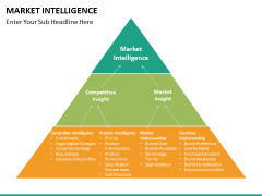 Market intelligence PPT slide 22