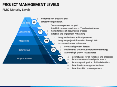Project Management Levels PPT Slide 8