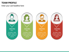Team Profile PPT Slide 19
