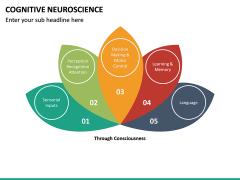 Cognitive Neuroscience PPT Slide 20