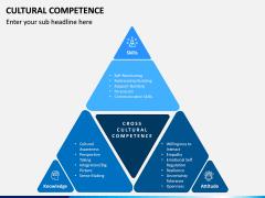 Cultural Competence PPT Slide 13