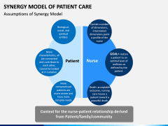 Synergy Model of Patient Care PPT Slide 4