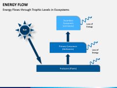 Energy Flow PPT Slide 11