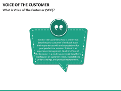 Voice of the Customer PPT Slide 18