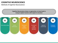 Cognitive Neuroscience PPT Slide 15