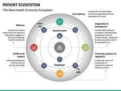 Patient Ecosystem PPT Slide 21