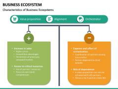 Business Ecosystem PPT Slide 25