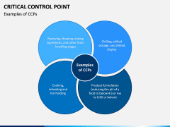 Critical Control Point PPT Slide 4