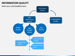 Information Quality PPT Slide 9