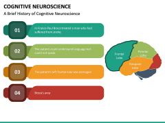 Cognitive Neuroscience PPT Slide 17